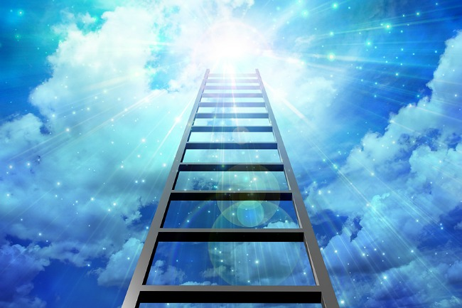 Your ladder to success
